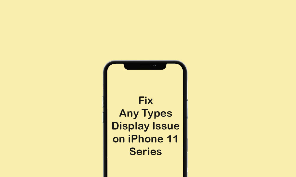 All Types of Display Problem on iPhone 11 and 11 Pro