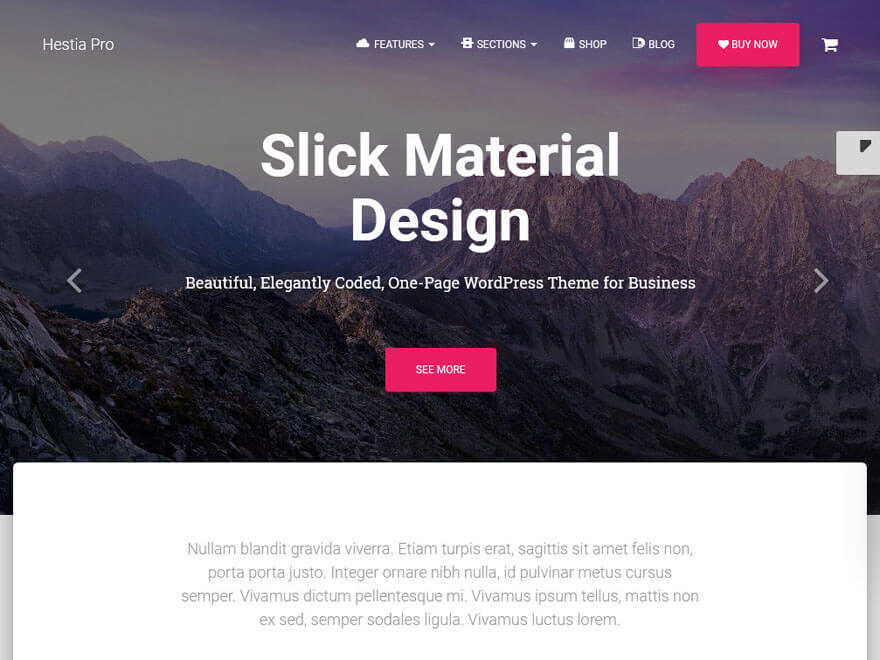 Hestia Pro-Best Premium Material Design Temas de WordPress 2018