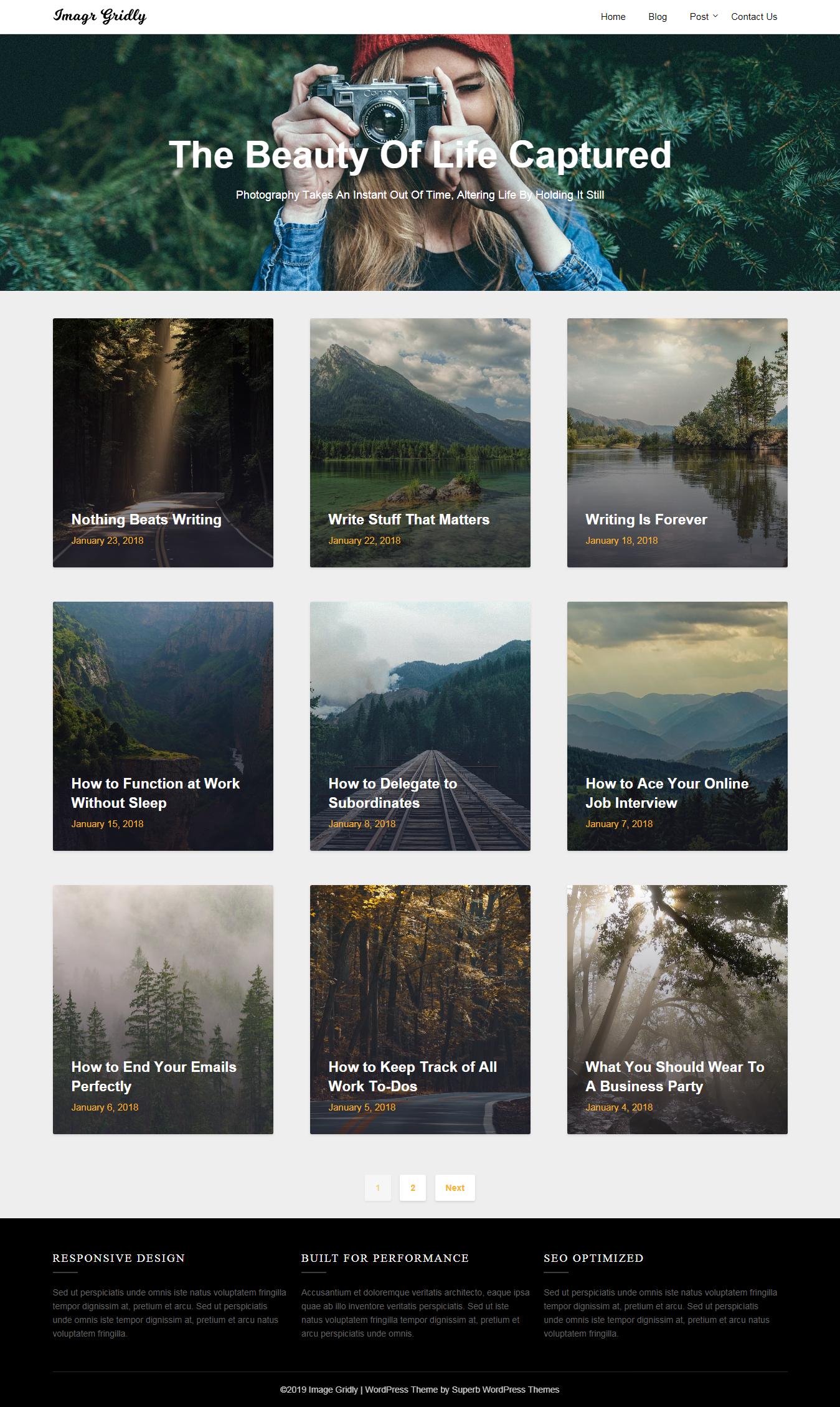 Image Gridly: el mejor tema gratuito de WordPress para agencias de SEO