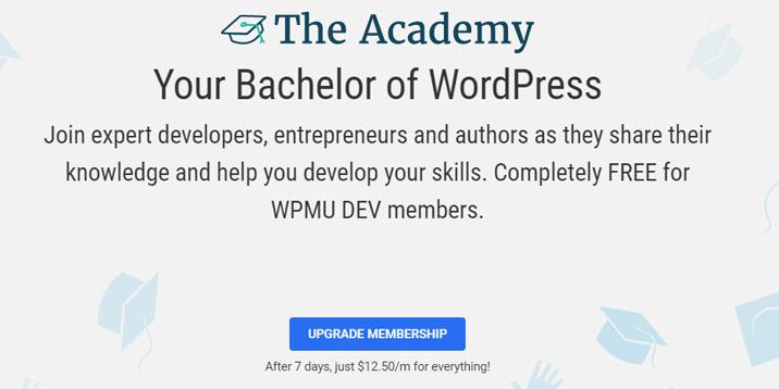 Academia WPMU DEV