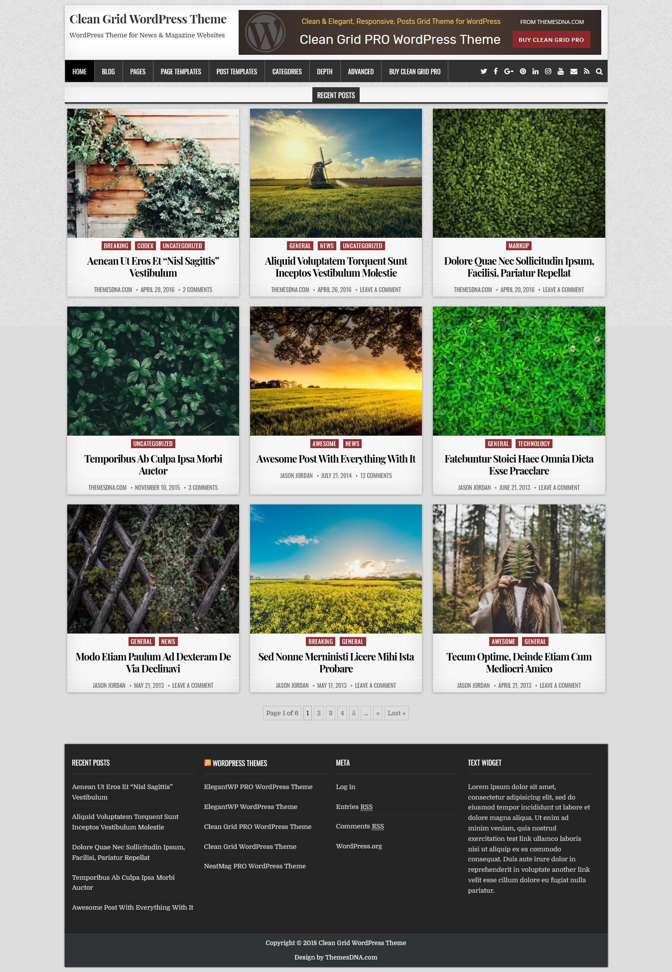Clean Grid - El mejor tema mínimo gratuito de WordPress