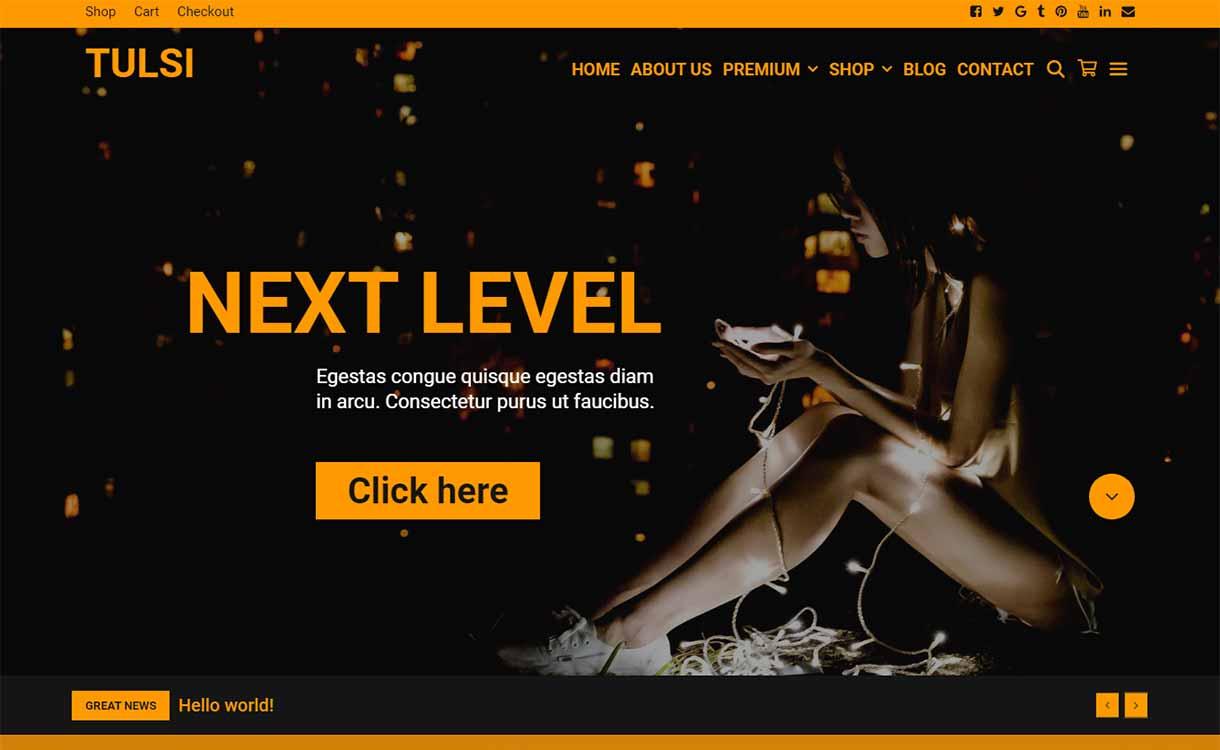 Tulsi-orange-WPKoi-tema-de-WordPress