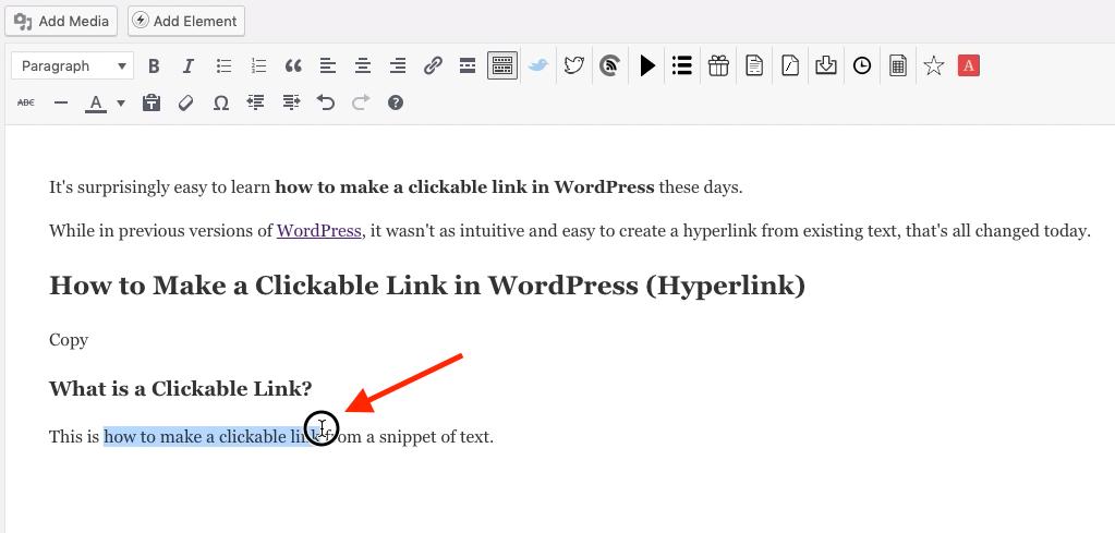 Resalte el texto del enlace en el que se puede hacer clic en WordPress