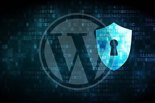 Forzar el cambio de contraseña para todos los usuarios en WordPress