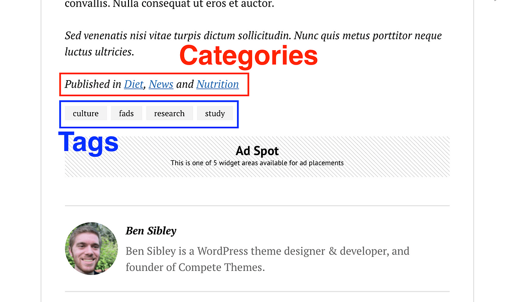 Etiquetas de publicación Categorías
