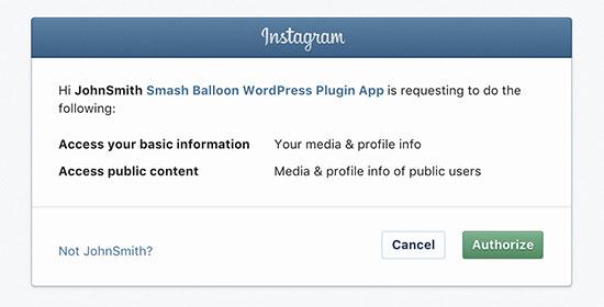 Autorizar el complemento para acceder a los datos de Instagram