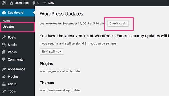 Buscar actualizaciones de WordPress