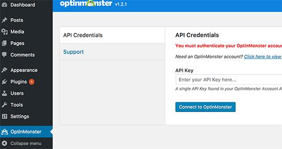 Agregue su clave de API de OptinMonster