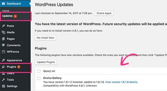 Actualización del complemento de WordPress disponible