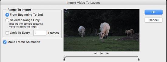 Importación de video a capas