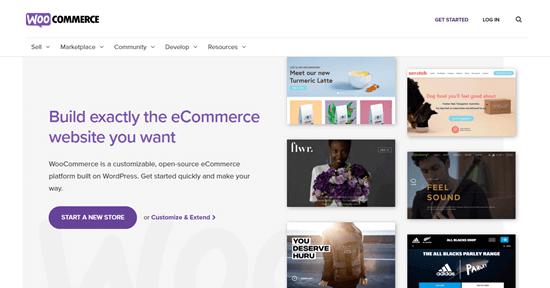 El sitio web de WooCommerce