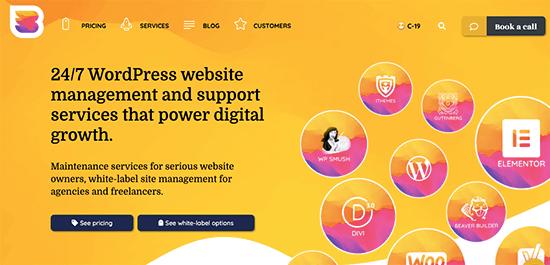 Servicio de mantenimiento de WordPress WPBuff