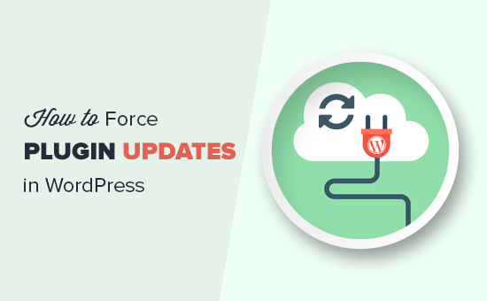 Forzar actualizaciones del complemento de WordPress
