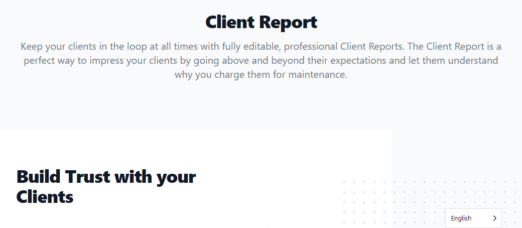 informe de cliente de wp umbrella