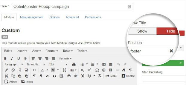 Detalles de la campaña de OptinMonster en Joomla