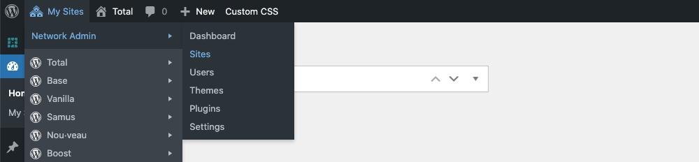 Configuración de administrador de red de WordPress
