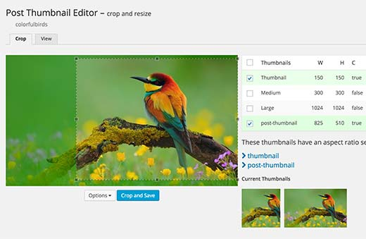 Editar miniaturas de publicaciones en WordPress