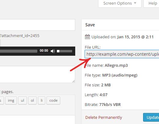 Obtener la URL del archivo multimedia