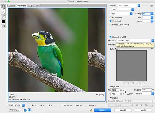 Guardar imágenes para la web en Photoshop