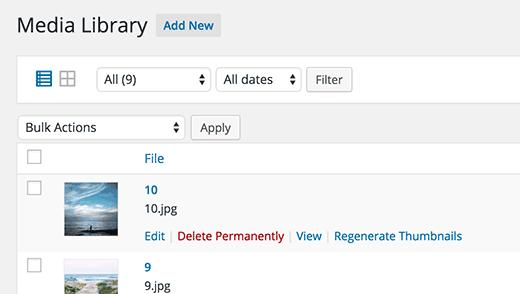 Regenerando tamaños de imagen en WordPress